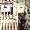#pointer #caution #signboard #security #ポインター #看板 #サインボード #番犬