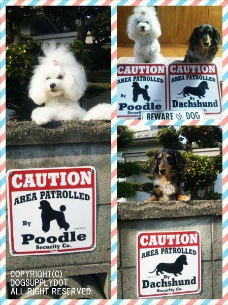 CAUTION サインボード:プードル&ダックスフンド(Poodle&Dachshund)
