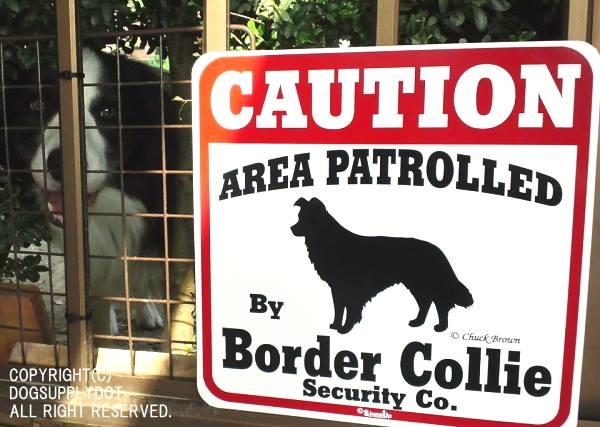 CAUTION サインボード:ボーダーコリー(Border Collie)