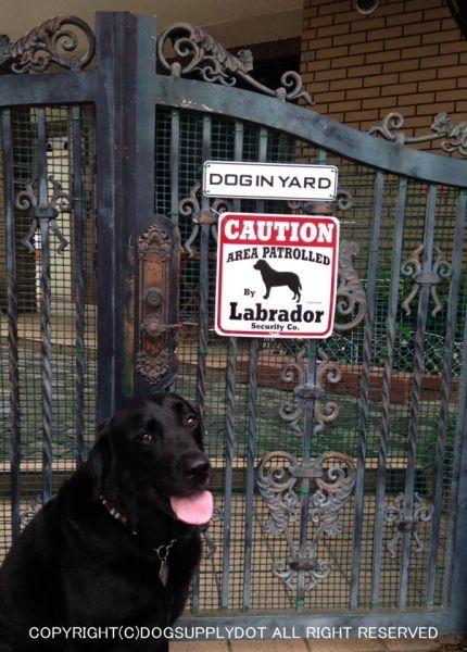 CAUTION サインボード:ラブラドール(Labrador)