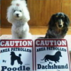 #dog #dachs #poodle #signboard #caution #american #犬 #ダックス #プードル #看板