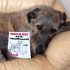 #irishwolfhound #signboard #american #アイリッシュウルフハウンド #サインボード #看板