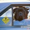 #bull mastiff #car #signboard #ブルマスティフ #車 #サインボード #看板